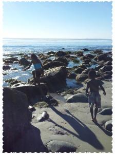 2014-01-15 tide pool2